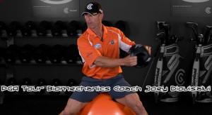 Interview with PGA Tour Biomechanics Coach Joey Diovisalvi