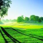 Ah sundrenched golf course  golf instagolf instagolfer golfcourse golfinghellip