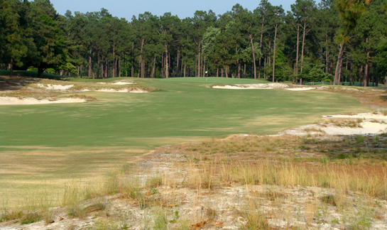 pinehurst2 wasteareas Waste Area or Bunker at Pinehurst No. 2?