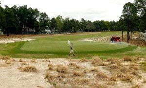 Waste Area or Bunker at Pinehurst No. 2?