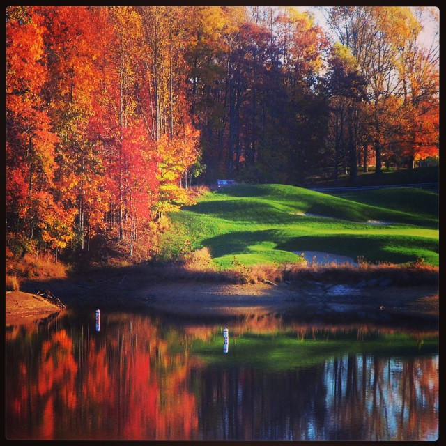Fall golf. #golf #autumn #fallgolf #foliage ⛳️?????