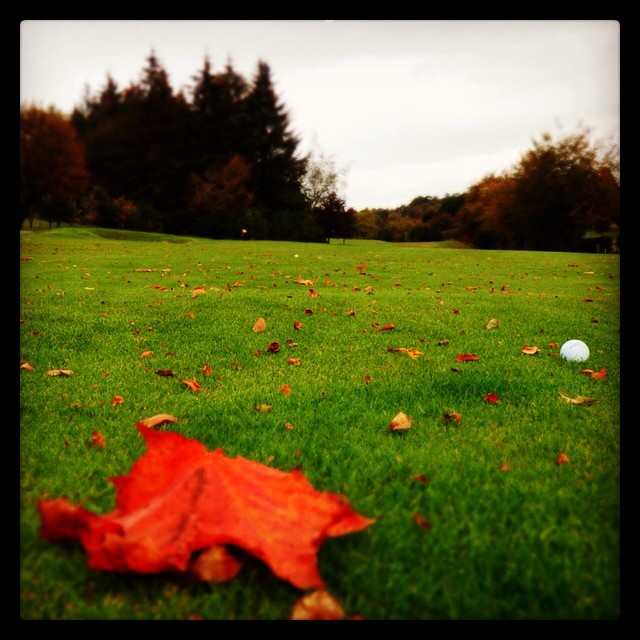 Repost from @golow2014 via @igrepost_app, It's starting to look a lot like #autumn out there #golf #golow #fallgolf