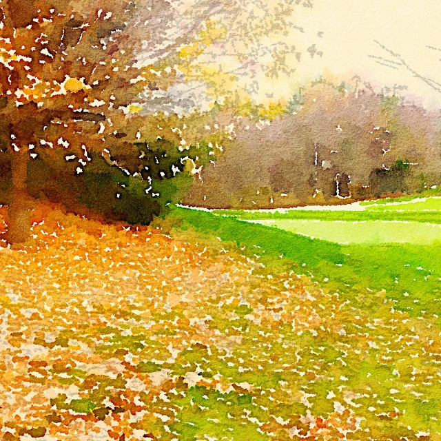 CrumpinFox GC. Fall 2014. #golf #instagolf #golfart ???
