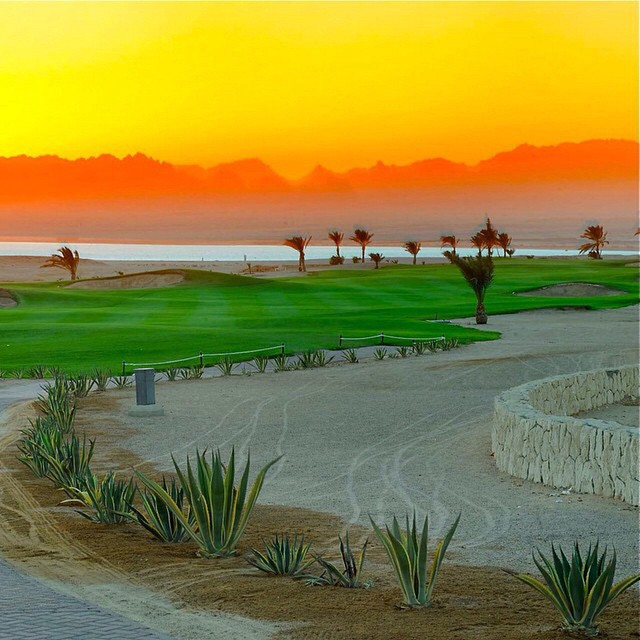 Repost from @privatapartmentinsomabay via @igrepost_app, Golf/Relax/Diving/Kite holiday in www.privat-apartment-in-somabay.com #somabay #egypt #ägypten #hurghada #safaga #golf #golfing #ferienwohnung #privatapartment #diving #kite #holiday #urlaub #vacation #redsea